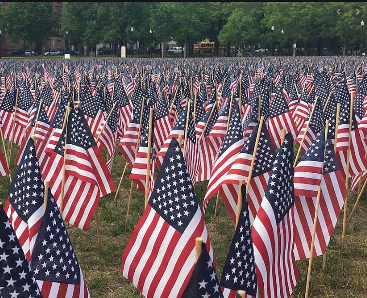 Memorial Day hundreds of flags standing on park lawn